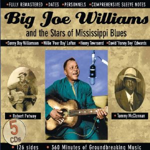 Big Joe Williams &amp; The Stars Of Mississippi Blues